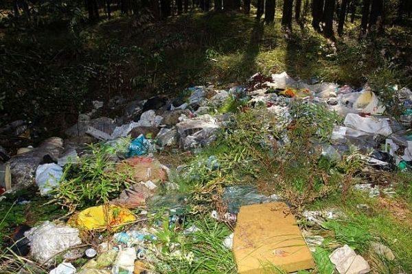 Foto mājaslapai atkritumi